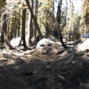 &quot;Rubicon&quot; incident fire scars